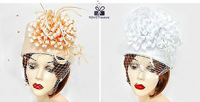 Women's Fun Feather Ribbon Birdcage Hat Formal Wedding Church Derby - USA Seller