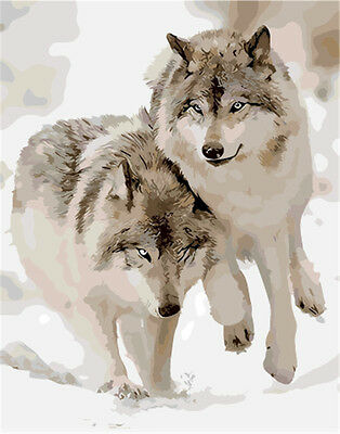 "Wolves 16X20"" Paint By Number Kit DIY Acrylic Painting on Canvas 1360"