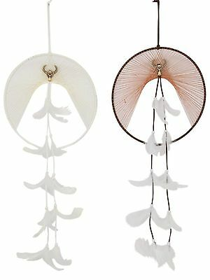 Set of 2 Cow Skull Tribal Design Dreamcatcher Dream Skull Cream & Brown 23cm NEW