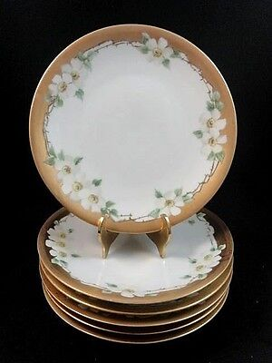 6Pc Antique RS Germany Hand Painted WHITE CHERRY BLOSSOM Bread Butter Plate Set