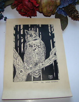 """Vintage Ink Drawing Of Owl By Sarah Fletchall  7"""" X 10"""""""