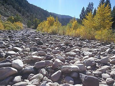 20 Acre California Placer Mining Claim (Mono County)