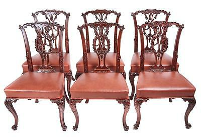 Quality Set Of 6 19Th Century Carved Mahogany Dining Chairs