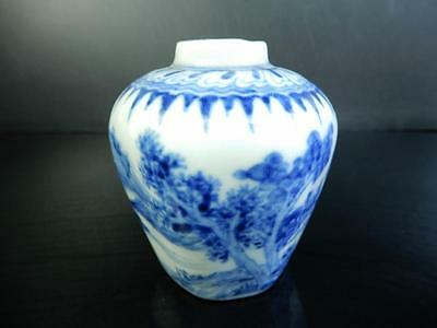 F2555: Japanese Old Imari-ware Landscape pattern TEA CADDY Chaire Container