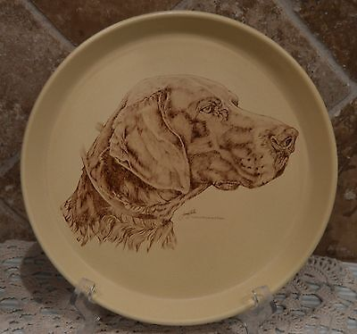 German Shorthaired Pointer~Pottery Plate~Honiton England 003~Crescendo Memento