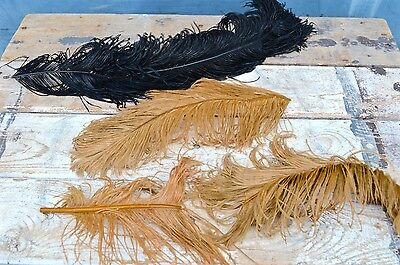 Vintage Collection Lot of Black Gold Ostrich Feathers Hat Millinery Plume Trim