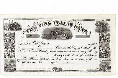 The Pine Plains Bank (Duchess County, Ny)...1800's Unissued Stock Certificate