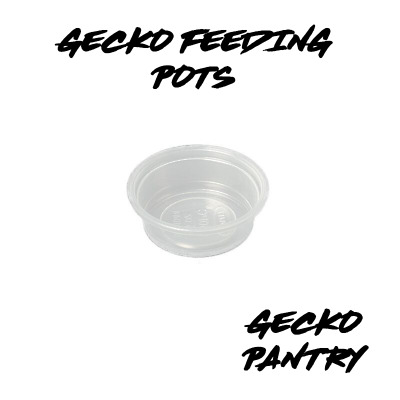 100x Small Spare Pots For Pangea Mini Magnetic Gecko Feeder, Small Acrylic Ledge