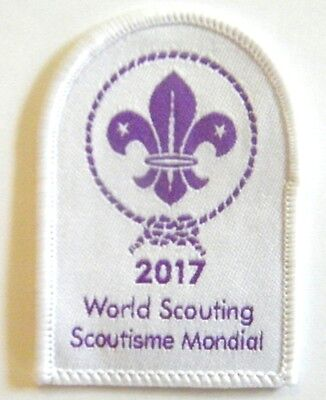2017 World Scouting Badge - HAPPY NEW YEAR - nice Scout badge for the collection