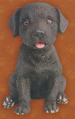 BLACK LAB Labrador Retriever BOBBLE HEAD FIGURINE Puppy Dog Pet Show Auto RV NEW