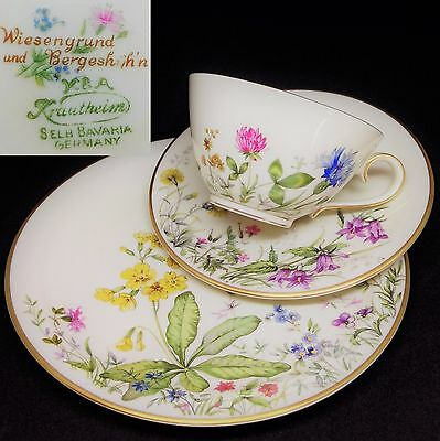 Krautheim Wiesengrund & Bergeshöhn Meadow Flowers German Vintage China Trio Set
