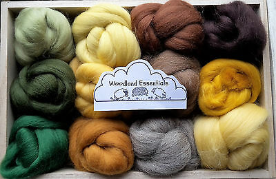 12 Woodland colours Merino & Shetland Wool roving/ tops / needle felting, 60g