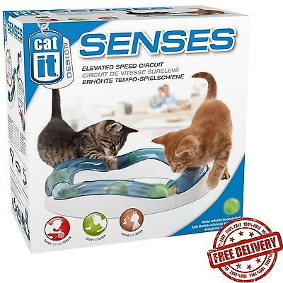 Cat Senses Of Touch and Sound Hunting Prey Circuit Play Game Cats Attention Toy