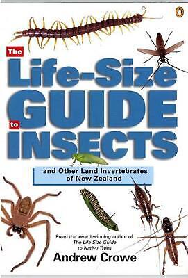 The Life-Size Guide to Insects and Other Land Invertebrates of New Zealand by An