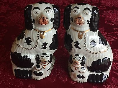 VINTAGE PAIR OF STAFFORDSHIRE King Charles Spaniel DOGS REPRODUCTION