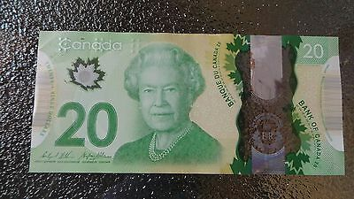 Canadian $20 Dollar Bank Note Polymer Bill FWS1818166 Circulated 2015 Canada