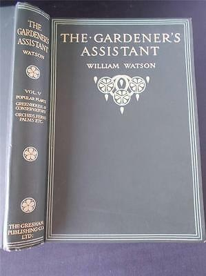 Vtg Book THE GARDENERS ASSISTANT Vol V Gardening Greenhouse Orchids Ferns Palms