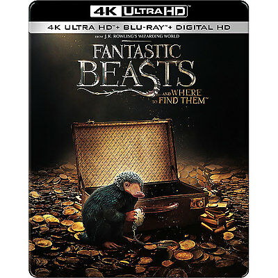 Fantastic Beasts and Where to Find Them SteelBook [4K Ultra + Blu-ray + Digital]