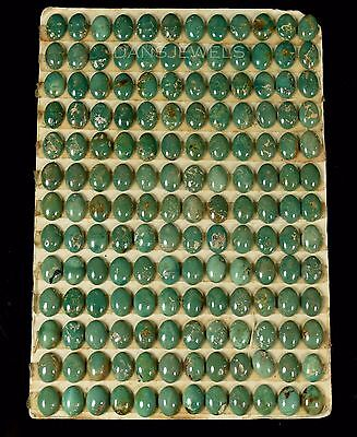 Lot of 156 Stones Carded 5x7mm ROYSTON Natural Turquoise Cabochons 80 Carats