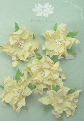 GARDENIA Flowers & Leaves IVORY Mulberry Paper 5 Pk 50-55mm across Green Tara A