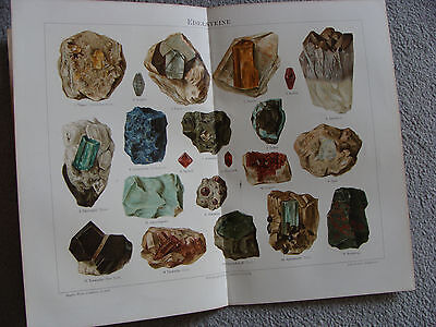 Lithographie, Druck, Tiere, Mineralien,Chromolithographie