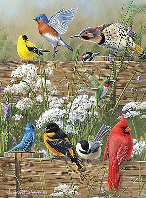 Buffalo Games Hautman Brothers Songbird Menagerie 1000-Piece Jigsaw Puzzle New