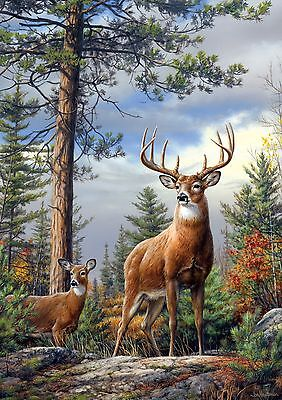 Buffalo Games Large-Piece Family Standing Proud 300-Piece Jigsaw Puzzle New
