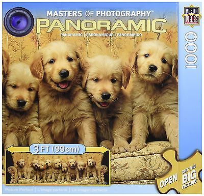 Masterpieces Picture Perfect Panoramic Jigsaw Puzzle (1000-Piece) New