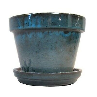 Border Concepts 11931 Standard Pot with Attached Saucer 4-3/8-Inch Tropic... New