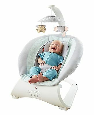 Fisher-Price Sweet Surroundings Deluxe Bouncer New