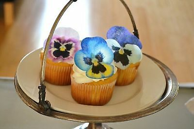 Edible Pansies - Pink Purple and Blue Set of 12 - Cake and Cupcake Topper... New
