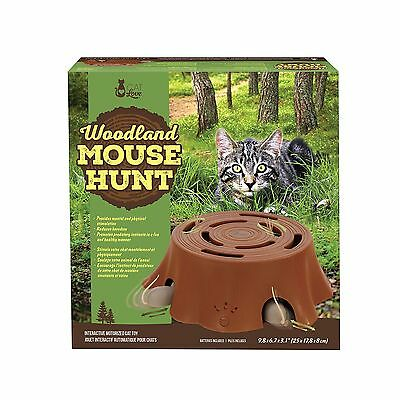 Cat Love Woodland Mouse Hunt Interactive Toy New