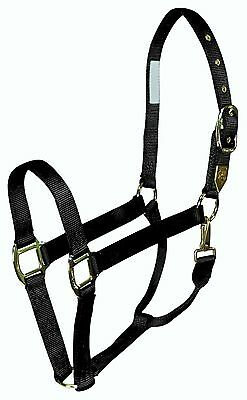 Hamilton 1DS SMBK Deluxe 1-Inch Nylon Horse Halter with Snap Black Small New