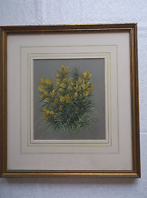 FRAMED PASTEL DRAWING by S.E.BAILEY A BEAUTIFUL STUDY OF GORSE