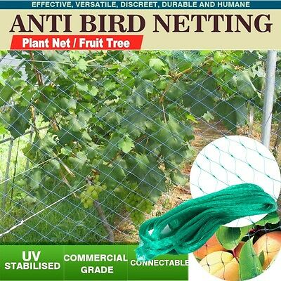 Green Commercial Fruit Tree Plant Knitted Anti Bird Netting Pest Net Top Quality