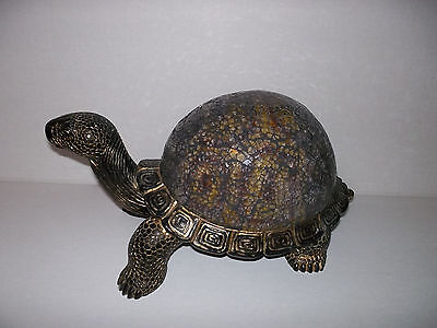 Collectible Turtle Gold/black