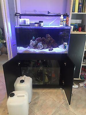 Full set up salt water aquarium - Aqua One