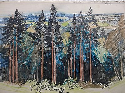 COLOURED GRAPHITE DRAWING by FREDERICK GEORGE WILLS 1901-1993 R.I. FINCHAMPSTEAD