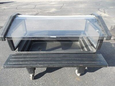 Cambro 4 Ft Portable Food/salad Bar With Casters