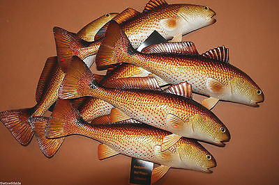 (7), Redfish, Saltwater Fish Decor For A Seafood Restaurant, Fish Wall Decor #28