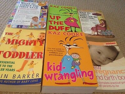 Bulk Parenting & Pregnancy Books x6 Up The Duff What To Expect When Expecting ++