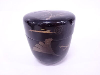 41882# Japanese Tea Ceremony / Natsume (Tea Caddy) / Lacquer / Ginkgo & Pine