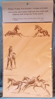 FOAL TIME Folded Notes with Seals - Sam Savitt - New IN Package