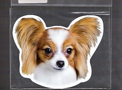 Papillon 4 inch face magnet for car or anything metal     New