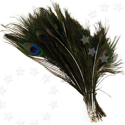 50 x Bouquet DIY Decoration Artisan Peacock Feathers Tail 10-12inch