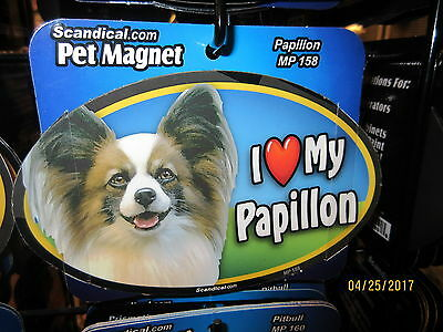 I Love My Papillon 6 inch oval magnet for car or anything metal  New
