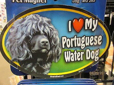 I Love My Portuguese Water Dog 6 inch oval magnet for car or anything metal  New