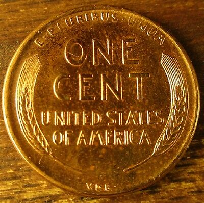 1909 VDB Lincoln Wheat Penny-Cent     A True Gem !!                   425171