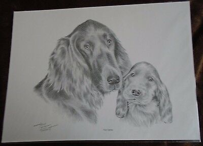 Red Setter and Puppy Pencil Drawing A4 Print by Artist Tony Forrest