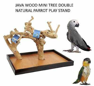 Java Wood Mini Tree Double Natural Parrot Play Stand Perch African Greys 4023